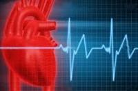 بیماری قلبی عروقی در صدر علت مرگ و میر سارویها