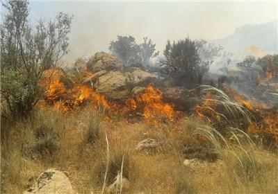 ۱۰هکتار از گندم زارهای  بخش دودانگه  در آتش سوخت