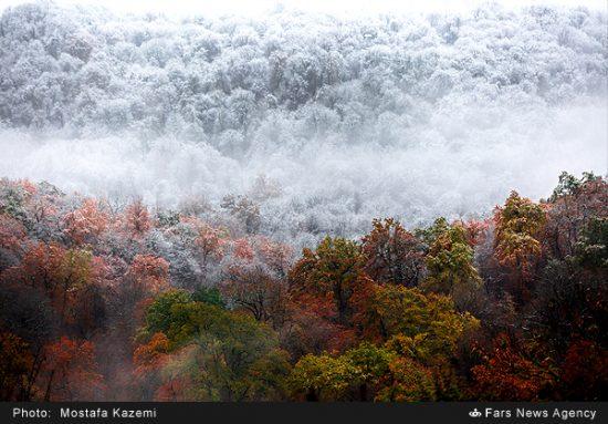 تصاویر زیبا از مناظر زمستانی در پاییز چهاردانگه