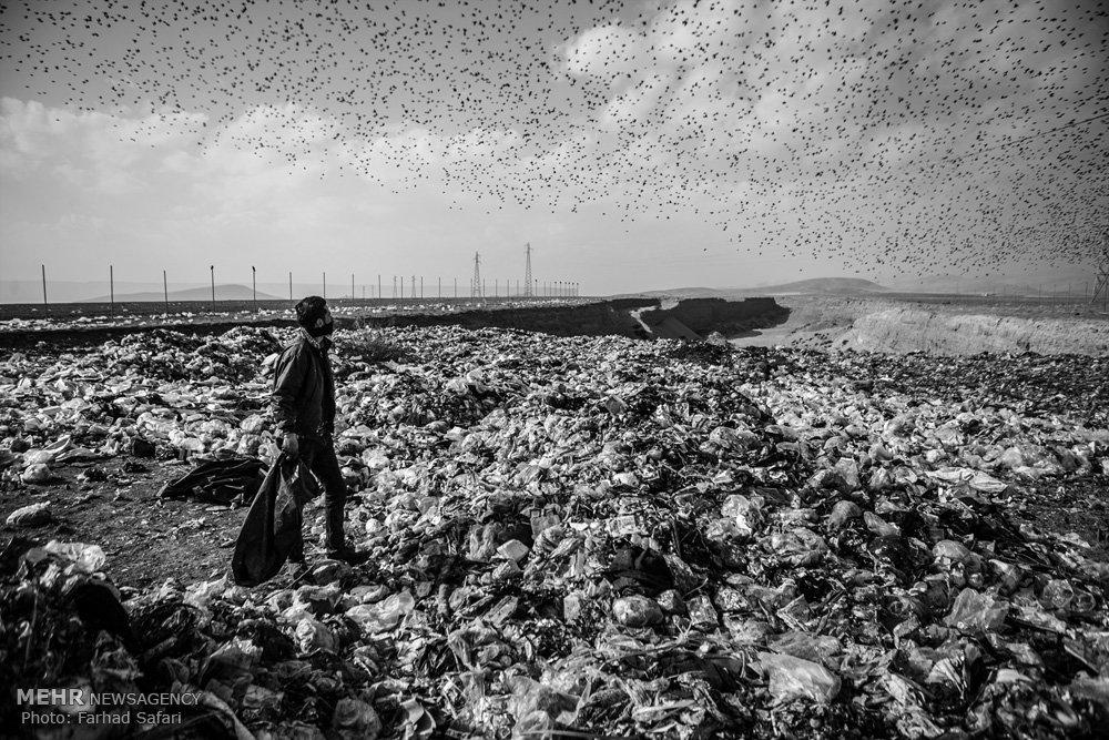 طبیعت بکر مازندران اسیر زباله/ عیاربخشی طلای کثیف در تنکابن