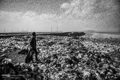 6 هزار تن زباله تولیدی مازندران در زمان پیک مسافر