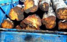 کشف چوب قاچاق در چهاردانگه توسط نیروهای حفاظت صنایع چوب و کاغذ مازندران