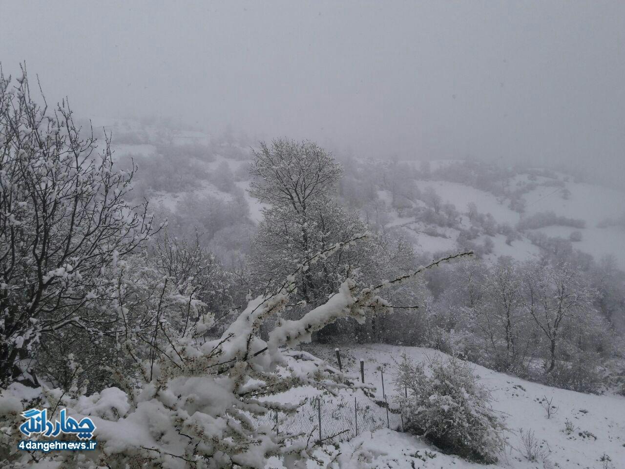 آخرین بارش برف زمستانی ارتفاعات چهاردانگه را سفیدپوش کرد