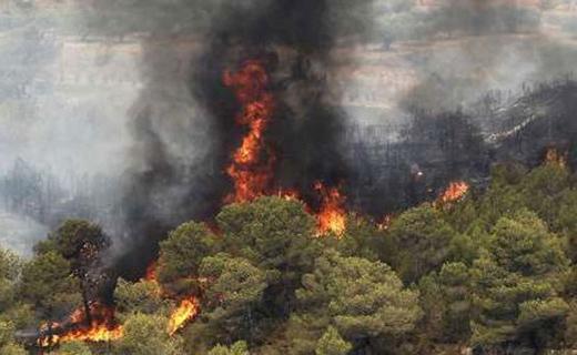 هشدار یگان حفاظت منابع طبیعی: در جنگل آتش روشن نکنید