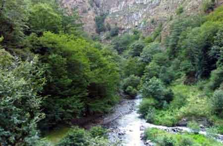 پایش جنگلهای شمال در قالب طرح استراحت