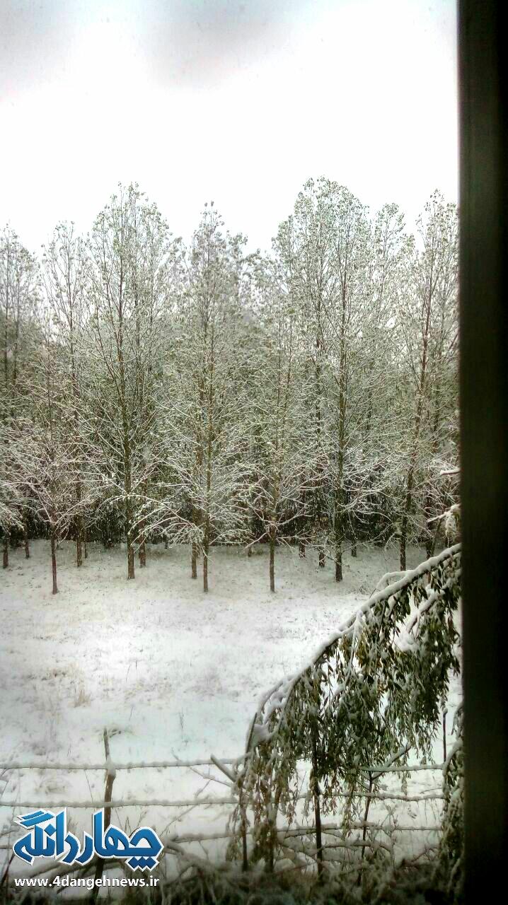 بارش اولین برف پاییزی چهره چهاردانگه را زمستانی کرد + تصاویر