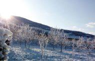 بارش 3 سانتی متر برف در کیاسر/وزش باد گرم در ارتفاعات