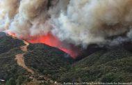 5 هکتار از اراضی جنگلی اشکته چال رامسر در آتش سوخت