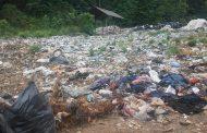 وضعیت نابسامان اراضی کشاورزی در محل دپوی زباله در فریدونکنار