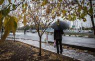 کاهش 27 درصدی بارش باران طی دو سال گذشته در مازندران