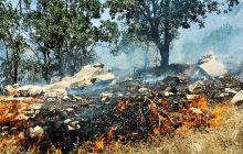 پایان آتشسوزی در جنگلهای آمل با بارش باران