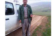 دستگیری 12 شکارچی غیرمجاز در کیاسر، ساری و آمل