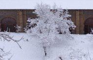 تصاویر زیبا از بارش برف در شهر کیاسر