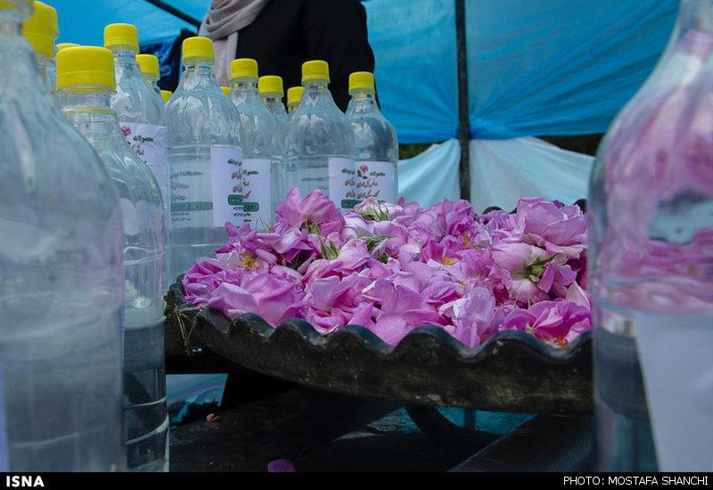 نخستین جشنواره ملی گل و گیاه در بابلسر برگزار میشود