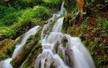 دودانگه ساری از مناطق بکر طبیعی مازندران