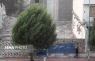 وزش باد شدید در غرب مازندران