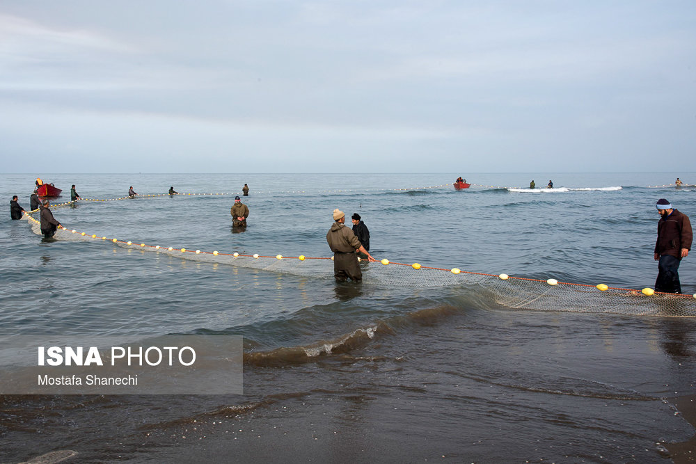 توزیع ناپایدار آب در دریای خزر