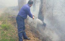گزارش تصویری از خاموش کردن آتش سوزی جنگل کیاده