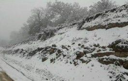 گزارش تصویری بارش برف بهاری در بخش چهاردانگه