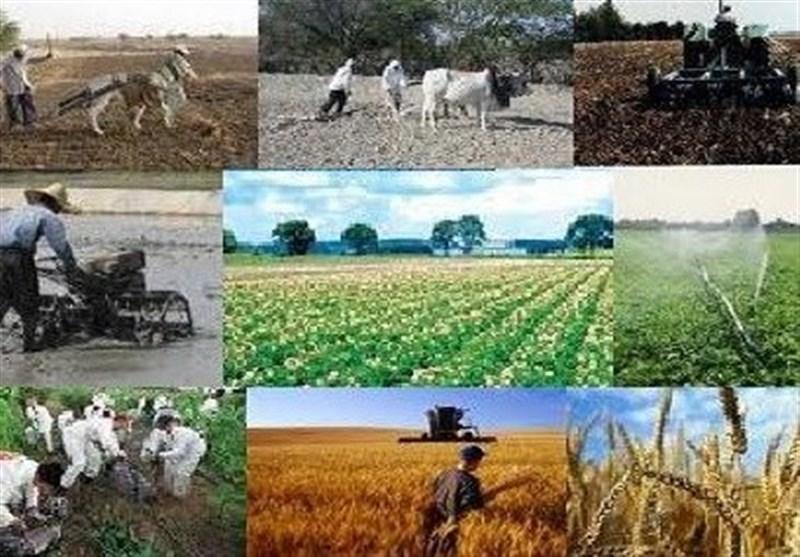 ساری| 662 طرح اشتغال روستایی در مازندران اجرایی شد