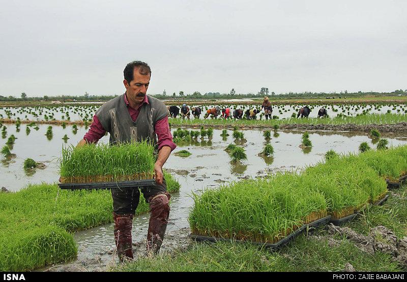 بحران مدیریت آب در استان مازندران