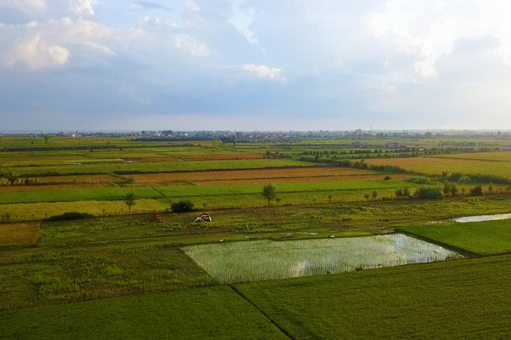 احتمال شور شدن خاک کشاورزی مازندران