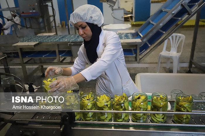 سرنوشت تسهیلات بانکی صنایع غذایی به ساخت دیوار ختم میشود؟