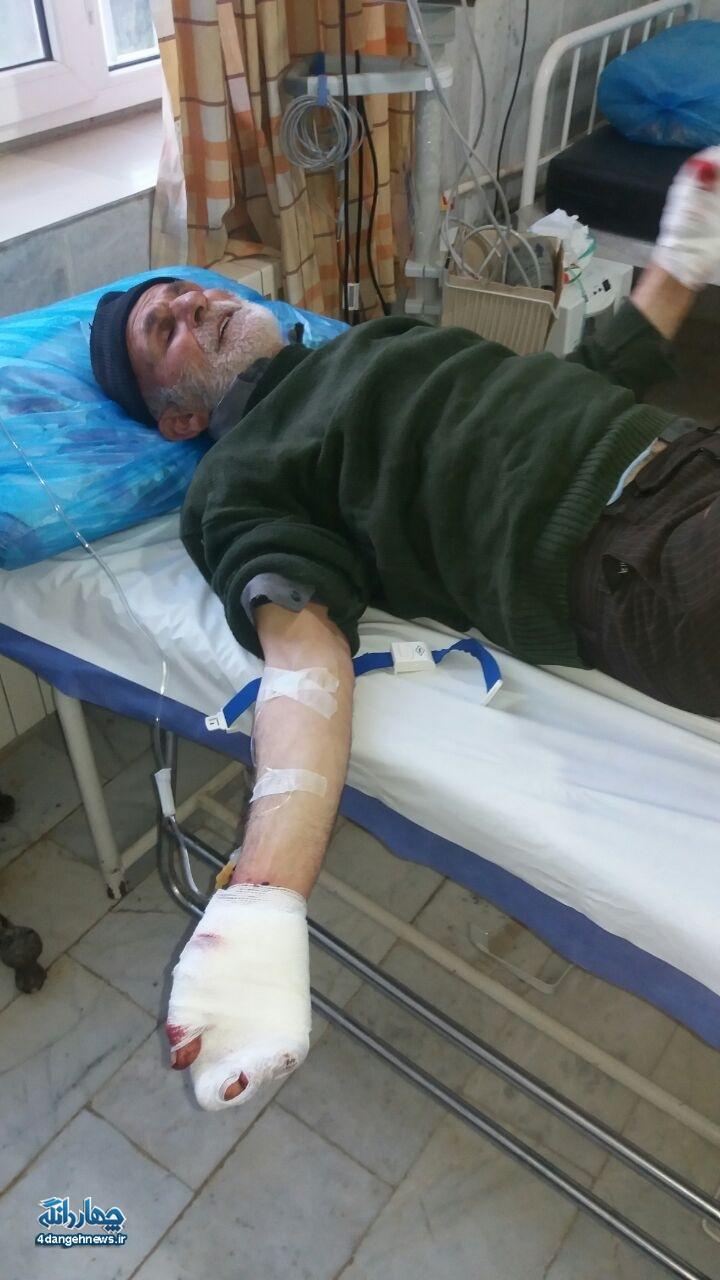 حمله گرگ به یک چوپان در روستای اروست