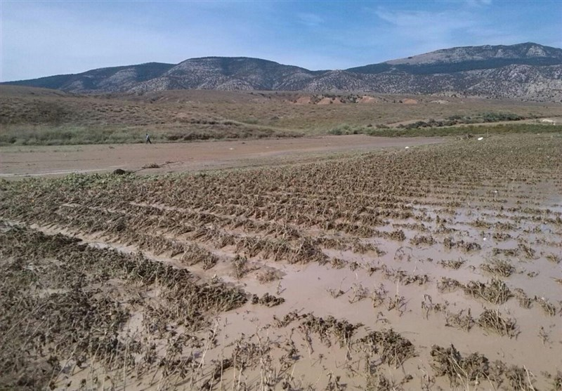 هواشناسی مازندران نسبت به جاریشدن روانآب در مناطق کوهستانی هشدار داد