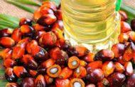 افزایش سهم پالم در مصارف روغن ایران/حتی یک مجوز ارگانیک برای محصولات در ایران صادر نشده است