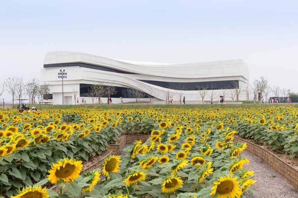 لزوم توجه به افزایش کیفیت در حوزه معماری و سازه ساختمان