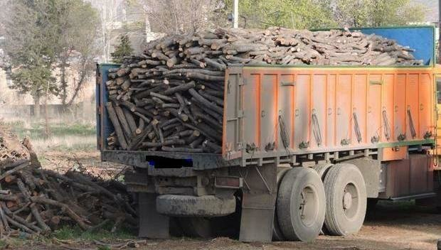 بیشترین قاچاق چوب در کدام مناطق است؟