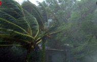 کاهش 16 درصدی بارندگیها در فصل زراعی مازندران