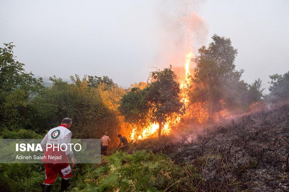تلاش 3 ساعته برای مهار آتش در دل جنگلهای چهاردانگه