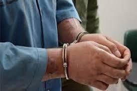 شاه دزد سرقت های اخیر در چهاردانگه دستگیر شد