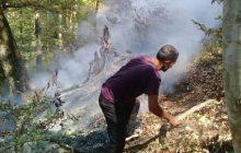 گزارش تصویری: آتش سوزی درجنگل های روستای لالا ، سیل درروستاهای برد و  چالو