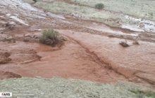 7 روستای چهاردانگه درگیر سیل و بارش شدید باران شدند/خسارت به 8 واحد مسکونی در روستای چالو