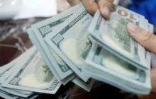 یک اقتصاددان: قیمت دلار میتواند به 8000 تومان برسد