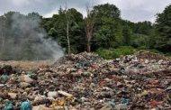 زباله از سر و کول جنگلهای شمال بالا میرود