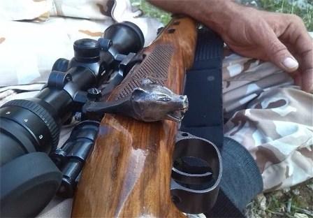 کشف 3 قبضه سلاح شکاری و دستگیری 7 شکارچی در چهاردانگه