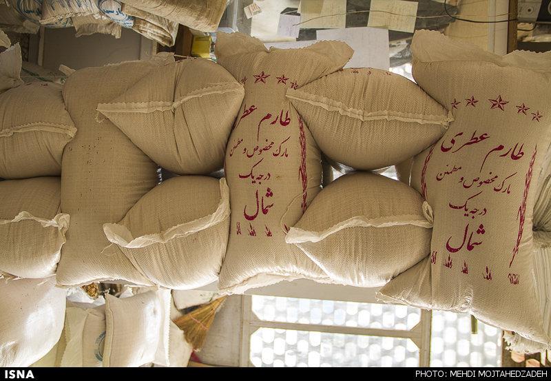 برای کمک به کشاورزان مازندرانی، واردات برنج به استان ممنوع شود