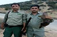 دستگیری شکارچیان غیرمجاز در بخش چهاردانگه