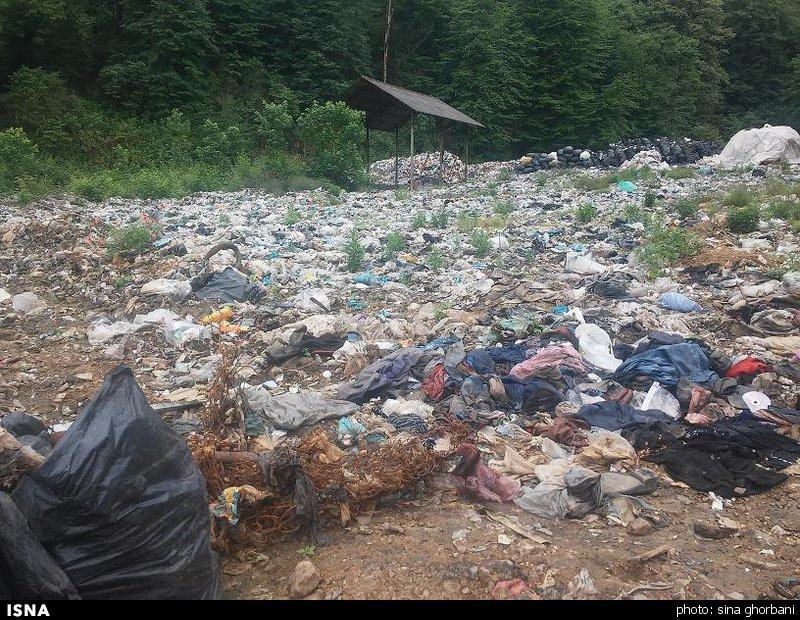 رئیس جهاد دانشگاهی مازندران: چرا قوانین منجر به حفظ محیط زیست ایران نشده است؟
