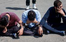جاعل و کلاهبردار میلیاردی در مازندران دستگیر شد
