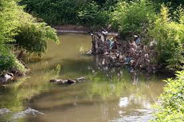 مخزن سد هراز دو سال قبل از آبگیری از زباله پاکسازی می شود