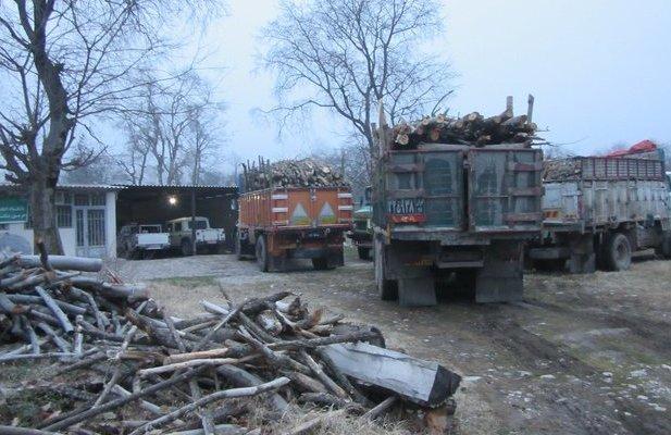 ۱۳ تن چوب آلات جنگلی در کیاسر کشف شد