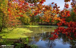 طبیعت پاییزی باداب سورت و دریاچه چورت چهاردانگه
