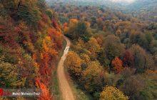 به رنگ پاییز ...