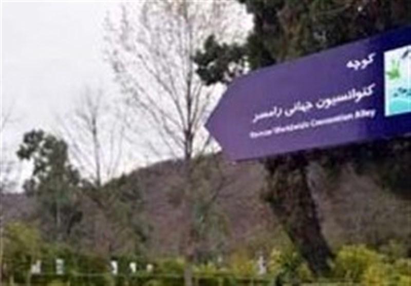 استاندار مازندران: تالابهای مازندران ظرفیت مناسبی برای توسعه زیست بوم استان است