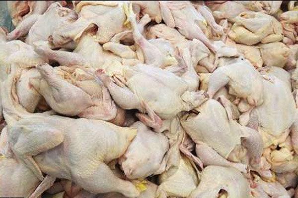 مرغ فروشیهای متخلف مازندران نقرهداغ شدند